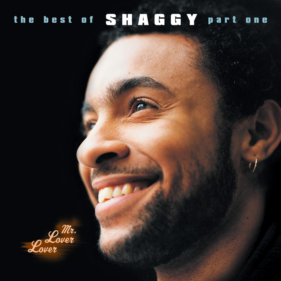 In The Summertime Feat Rayvon By Shaggy Pandora