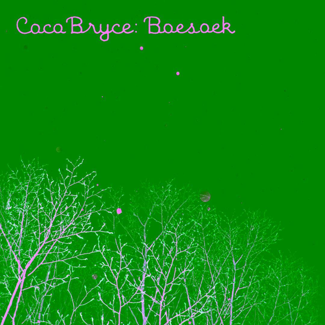 coco bryce boesoek