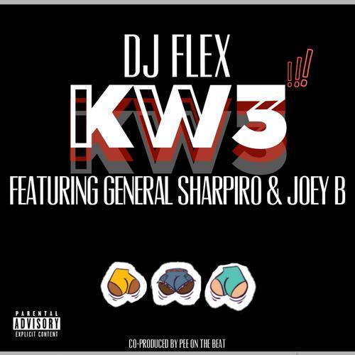DJ Flex - Pandora