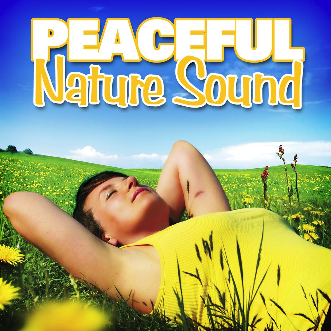 Gentle Wind Chimes for Yoga Meditation by Nature Sounds for